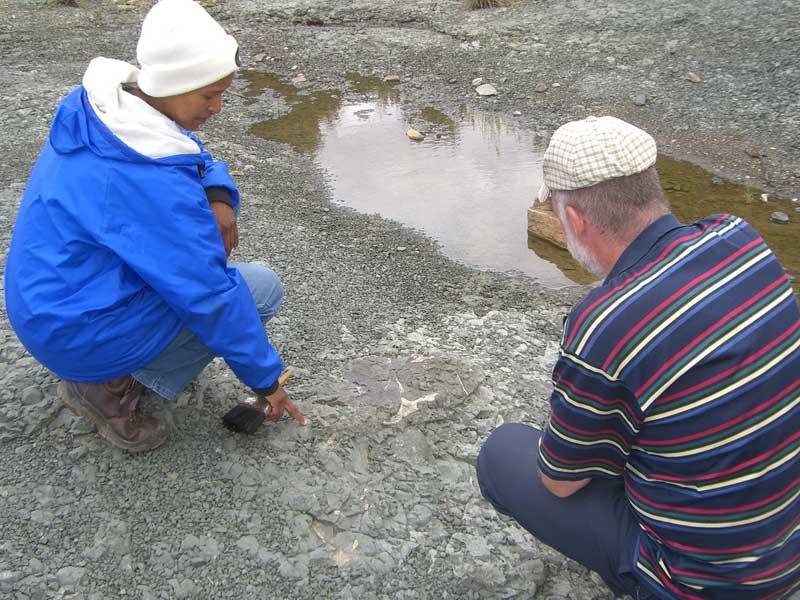 Fossil Safari nieu bethesda
