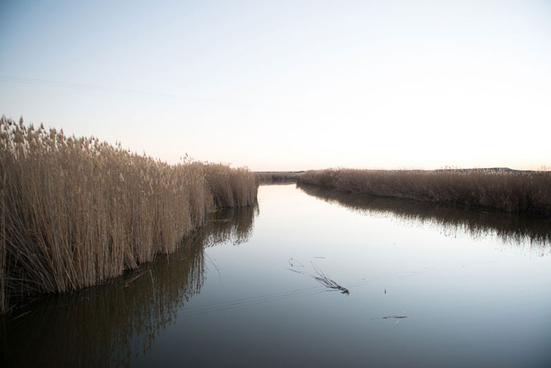 karoo gariep nature reserve